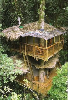 New Treehouses of the World (book)_ 6 by Roderick Romero Treehouses_ via Flickr This treehouse is pa. Cool but no