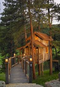 Nice Tree House. Win a free night in a tree