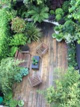 Small Jungle garden_ Nicola Stoken Tomkins My garden is_ like my house_ tiny. Being an inner_city garden it is also overlooked (which ...