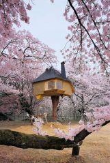 Tetsu Teahouse_ Hokuto Japan _ so Baba Yaga_
