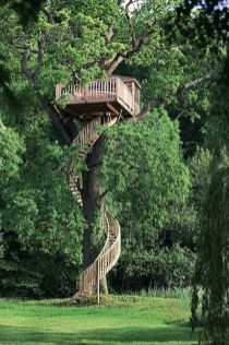 Tree house anyone_ View tree houses of different shapes and sizes in this album here_ theownerbuilde... Is buildin