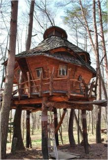 Tree house for adults _ Resort Spa Treehouse (Bali)