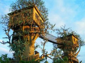 _Treesorts__ Extreme Treehouses You Can Actually Stay In _ Extreme Treehouses_ The Two Towers