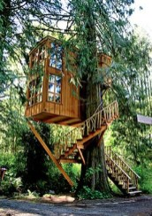 Trillium Treehouse_ Fall City_ Wash. A more modern treehouse hangs off the side of a western red cedar. This tree