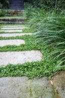 _courtyard _landscapedesign _backyarddesign _landscapearchitecture _garden _gardens _oasis _gardenin