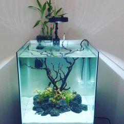 Fish_Tank (36)