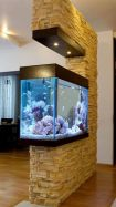 Fish_Tank (65)