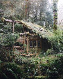 Primitive_Houses_and_Bushwak (69)