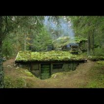 Primitive_Houses_and_Bushwak (70)