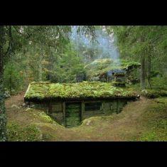 Primitive_Houses_and_Bushwak (70)