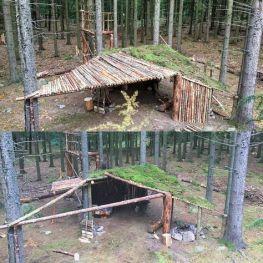 Primitive_Houses_and_Bushwak