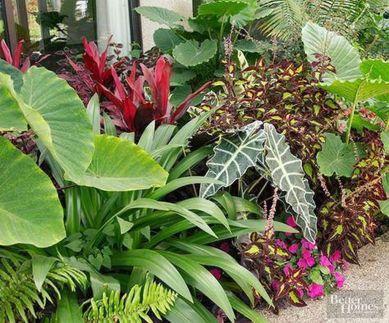 Fabulous-Tropical-Garden-Design-Ideas-That-You-Definitely-Like-03