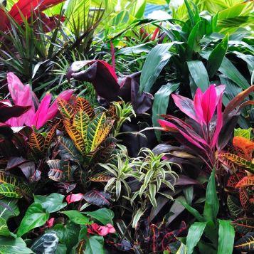 Fabulous-Tropical-Garden-Design-Ideas-That-You-Definitely-Like-07
