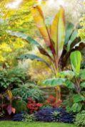 Fabulous-Tropical-Garden-Design-Ideas-That-You-Definitely-Like-31