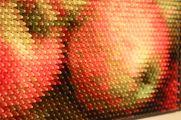 Color-arrangement-by-Christian-Faur