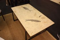 Stone-River-Fossil-Table