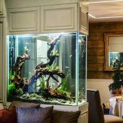 a-large-aquarium-enclosed-in-panels-is-a-beautiful-and-cool-space-divider-for-a-living-and-dining-room