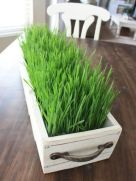 a-white-wooden-box-planter-with-wheatgrass-and-handles-is-a-lovely-and-cool-fresh-farmhouse-decoration
