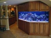aquariums-in-interiors-28-554x415