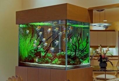 aquariums-in-interiors-30-554x380
