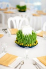 fresh-wheatgrass-decor-ideas-to-try-in-spring-1