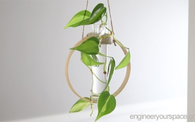 DIY Test Tube Plant Propagation Station – Mother's Day Gift