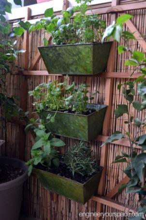 Herb-garden-full-side-view