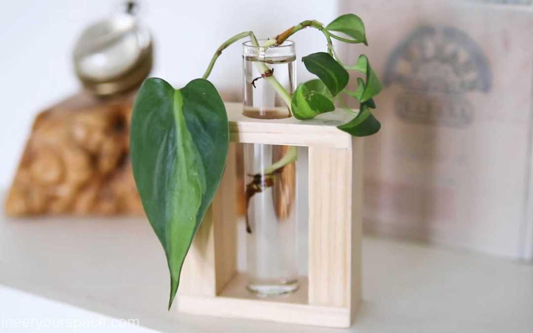DIY handmade Gift Ideas: Plant propagation station