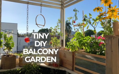 Balcony makeover: Creating a tiny garden for outdoor living