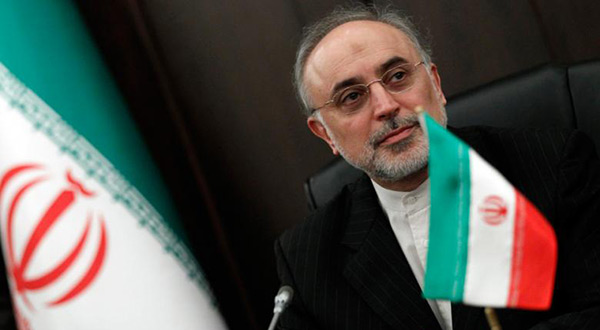 Head of the Atomic Energy Organization of Iran Ali Akbar Salehi