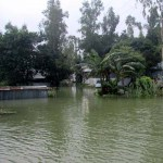 1,059 hectares of lands flooded in Sirajganj