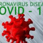 90 new coronavirus cases detected in Rajshahi division