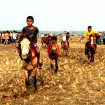 Horse race held in Magura