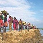 Tripartite talks on Rohingya issue begin