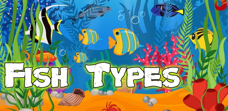 Fish Types Goldfish Saltwater Freshwater Fish types