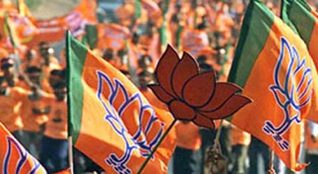 Delhi BJP to hold protest on June 17 against water-power cuts, pollution