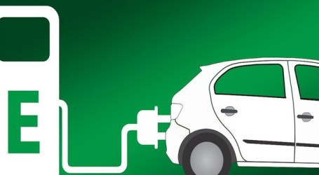 Rolling out regulatory agenda for EVs in India challenging: EY