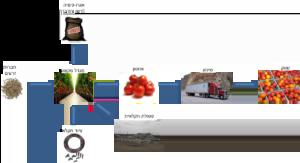 עמערכות יצור מזון - הפורום הישראלי לתזונה בת קיימא