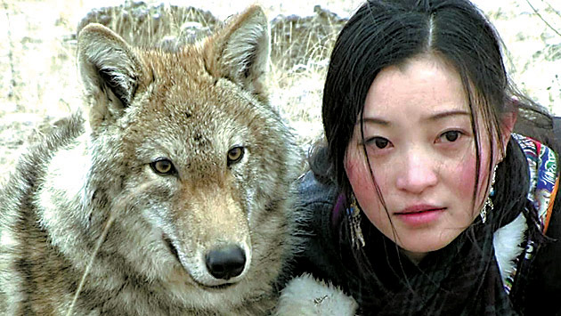 A Young Artists Life With Wolf Cub Peoples Daily Online