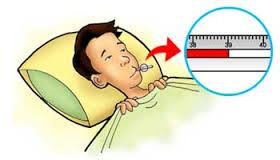 Example Procedure Text (How to Reduce a Fever Without Medication)