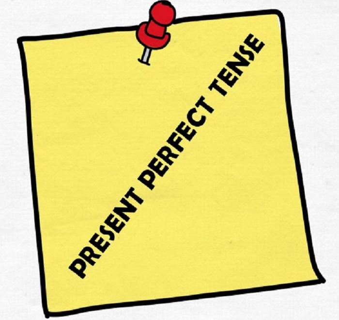 13 contoh kalimat present perfect tense