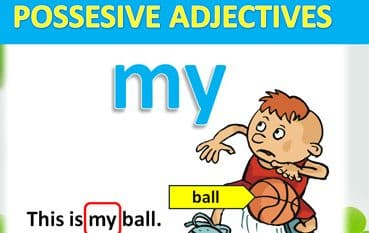 Kalimat Possessive Adjective