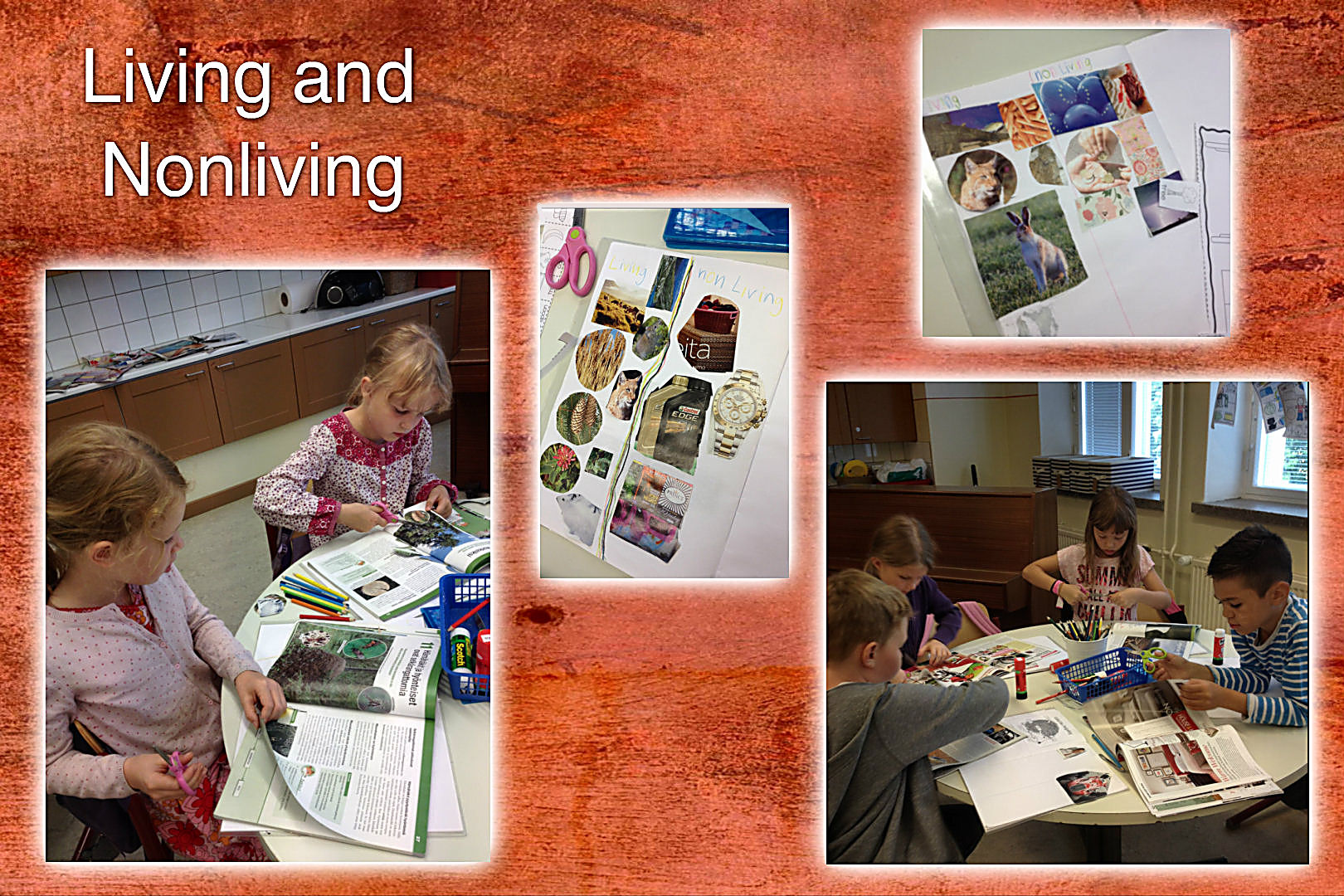 Living And Nonliving English Classes At Cygnaeus School