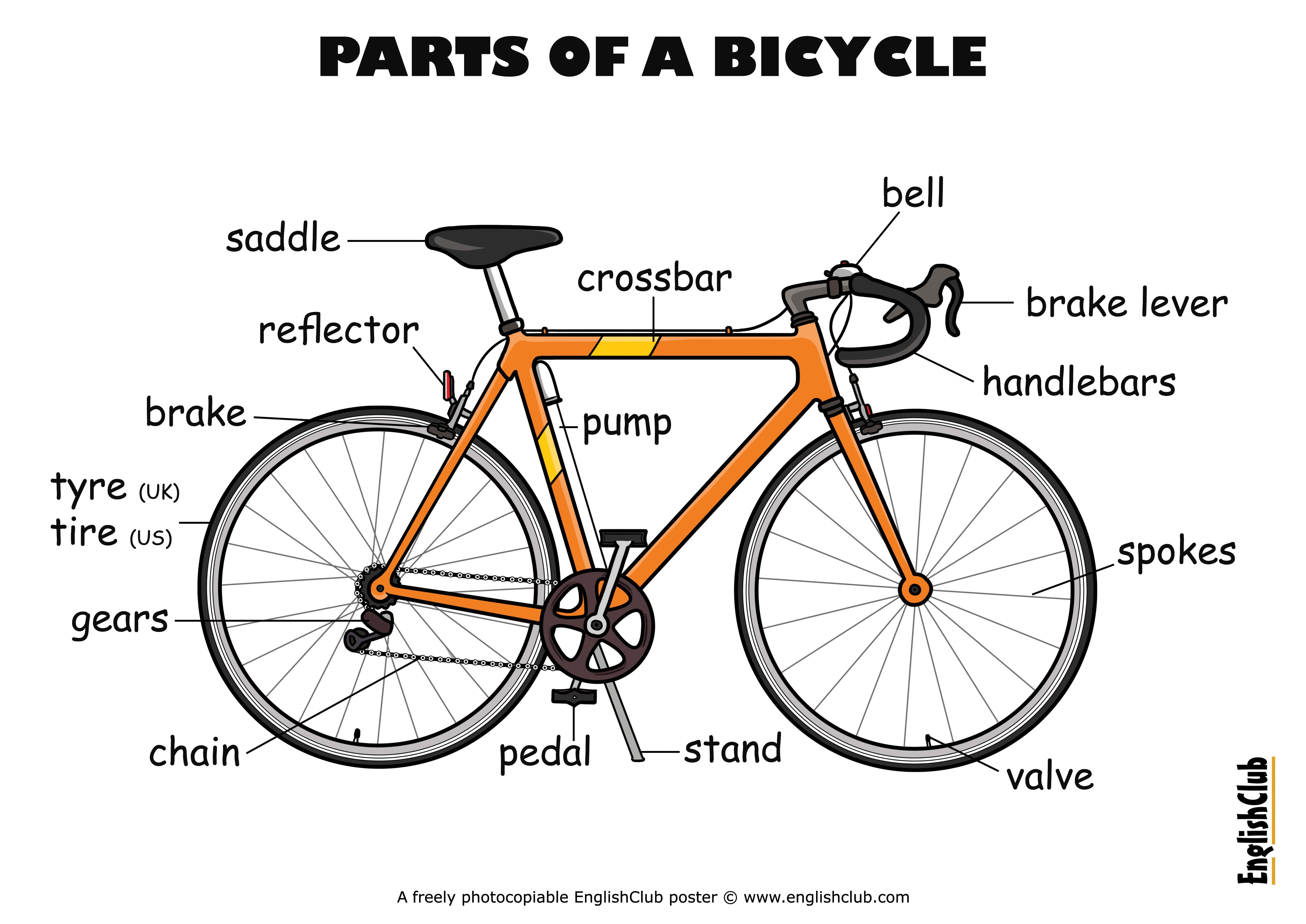 bike parts diagram 4 switch wiring mountain get free image