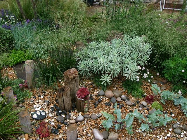 Seaside Rock Garden Gardens Of Bridgewater Pinterest Gardens
