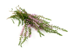 Heather flowers are just on of 22 herbs used.