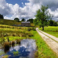 A view of a beautiful countryside path in the forest of Bowland in Lancashire, England