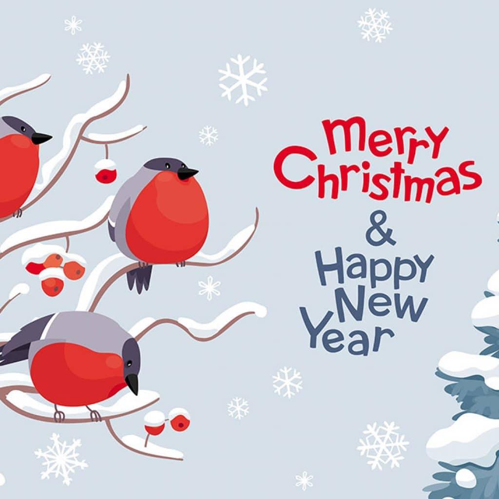 Weihnachtsgrüße Englisch Geschäftlich.Weihnachtsgrüße Text Auf Englisch