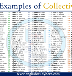 200 Examples of Collective Nouns - English Study Here [ 720 x 1280 Pixel ]