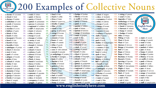 small resolution of 200 Examples of Collective Nouns - English Study Here